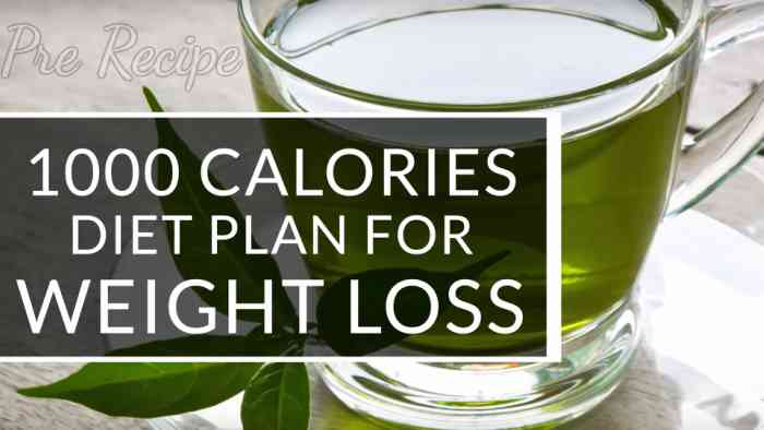 best meal plan for weight loss