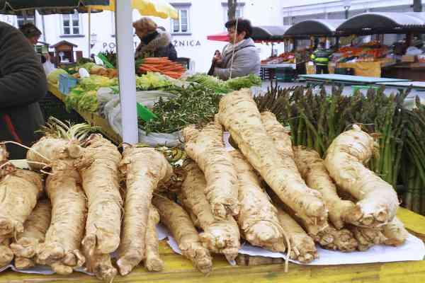 Best Horseradish Substitutes
